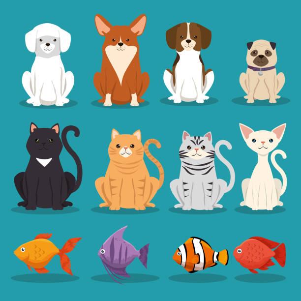 ilustraciones, imágenes clip art, dibujos animados e iconos de stock de perros gatos y peces personajes animales - animales de granja