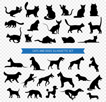 dogs cats black silhouette set