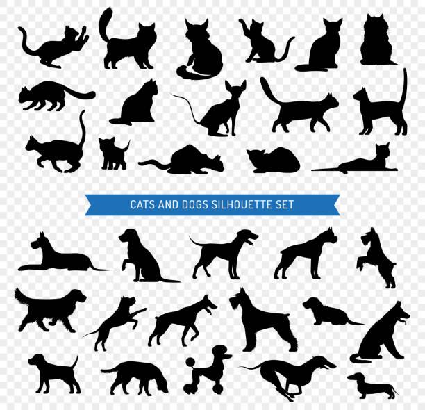 psy koty czarny zestaw sylwetka - dog stock illustrations