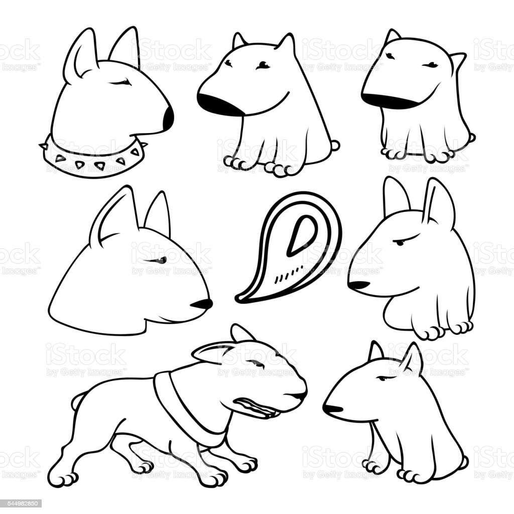 Dogs Characters Pitbull Funny Animals Cartoon Stock