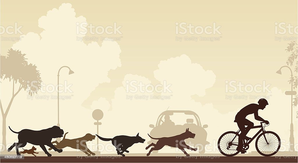 Dogs chasing cyclist vector art illustration