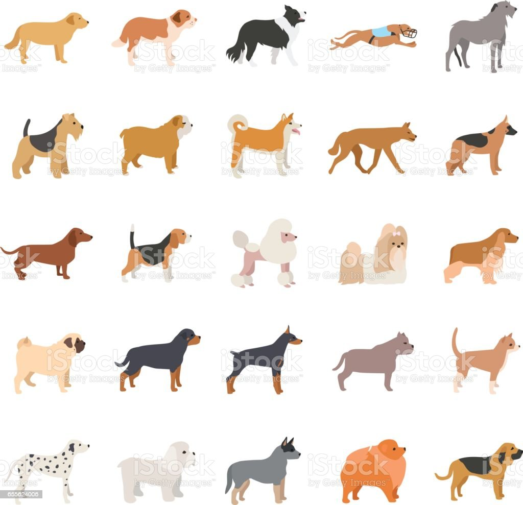 Dogs color vector icons vector art illustration