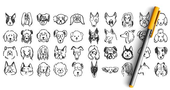 Dogs doodle set