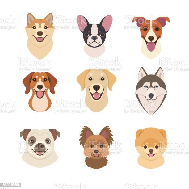 Dogs faces collection vector id865049586?b=1&k=6&m=865049586&s=612x612&h=lcf 9scyssqiyax9bbue6pylo0svsu2c6aww2n4z2gc=