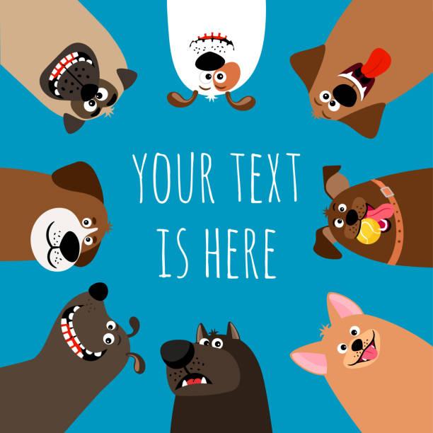ilustrações de stock, clip art, desenhos animados e ícones de dogs heads circle - happy dog