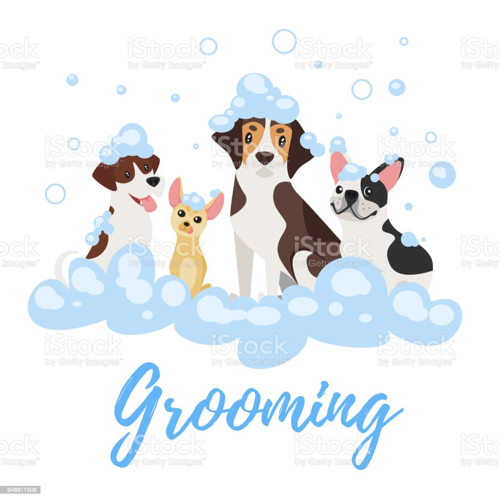 cães em espuma de sabão - ilustração de arte em vetor