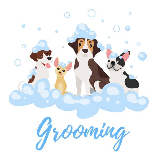 dogs  in soap foam vector art illustration