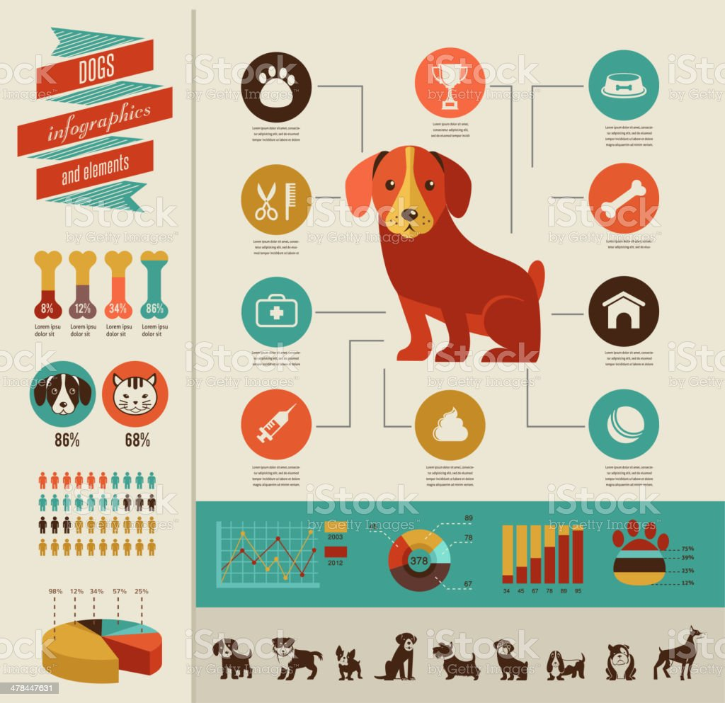 Dogs infographic and icon set vector art illustration