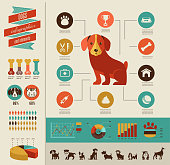 Dogs infographic and icon set