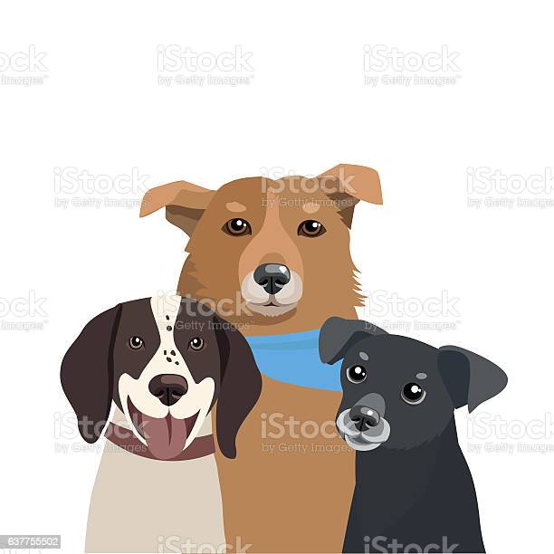 Dogs of different breeds vector three funny dogs illustration vector id637755502?b=1&k=6&m=637755502&s=612x612&h=yfitiwg luagjn3lklohygab0 cxnbqur0bc4cu9pb4=