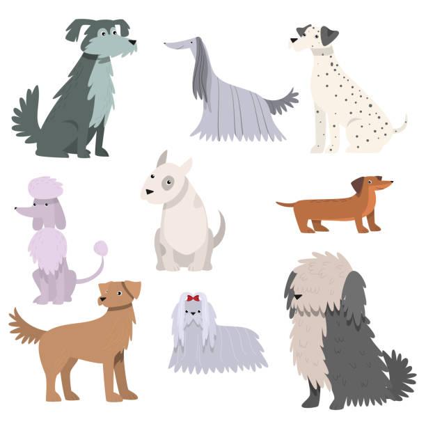 bildbanksillustrationer, clip art samt tecknat material och ikoner med hundar som. raster illustration i platt tecknad stil - hunddjur