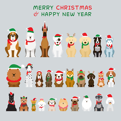 Dogs Sitting and Wearing Christmas Costume, Characters