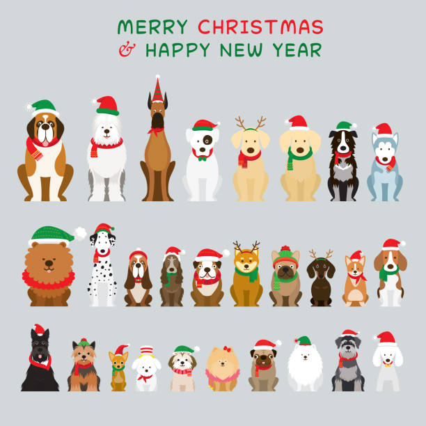 Dogs Sitting and Wearing Christmas Costume, Characters Winter and New Year Celebration santa hat illustrations stock illustrations