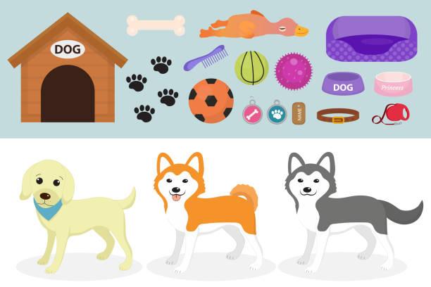 hunde sachen symbol set mit zubehör für haustiere, flachen stil, isoliert auf weißem hintergrund. haustiere-kollektion mit einem husky, akita inu, lablador. welpen spielzeug. vektor-illustration, clipart-grafiken. - hundebetten stock-grafiken, -clipart, -cartoons und -symbole