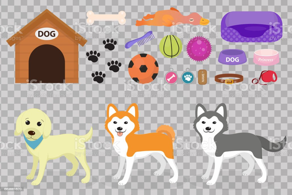 Dogs stuff icon set with accessories for pets, flat style, isolated on white background. Domestic animals collection with a Husky, akita inu, lablador. Puppy toy. Vector illustration, clip art. – artystyczna grafika wektorowa