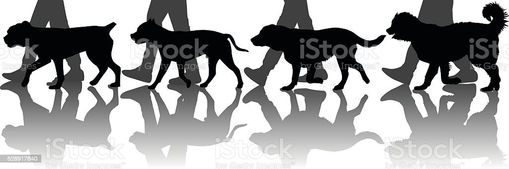 Dogs training vector art illustration