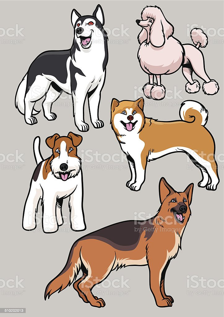 Dogs Vector Collection Part 3 Stock Illustration Download Image Now Istock