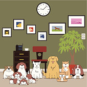 istock Dogs 173713844