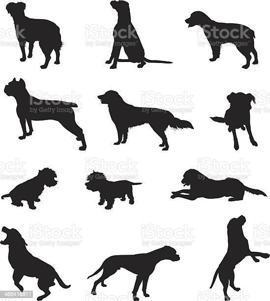 Dogs vector id455418811?b=1&k=6&m=455418811&s=612x612&h=6jlf46a7nklxla1xwarqkmuz27pjecpz6r7lpvpak28=