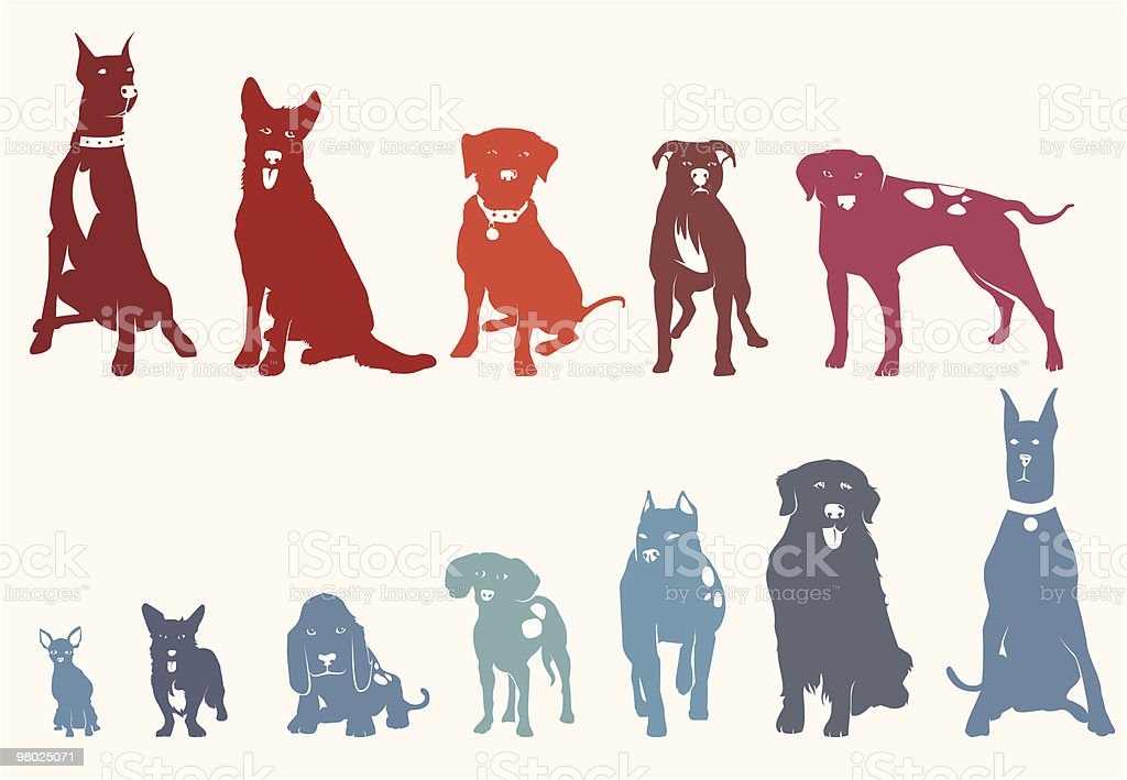Dogs royalty-free dogs stock vector art & more images of american bulldog