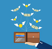 Dollars and coins with wings flying