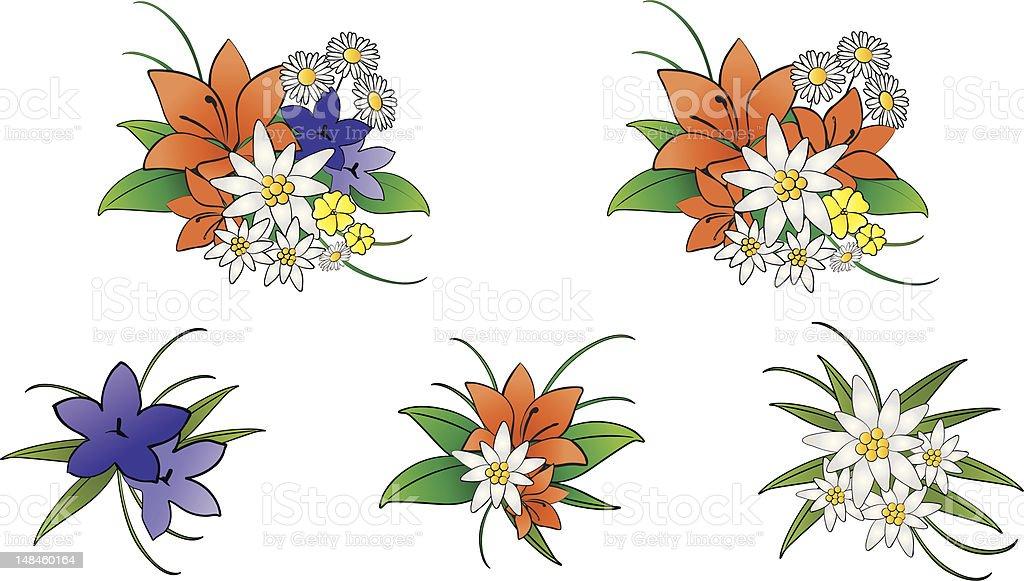 Dolomiti mountains flowers royalty-free stock vector art