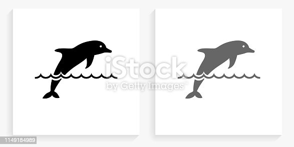 Dolphin Black and White Square Icon. This 100% royalty free vector illustration is featuring the square button with a drop shadow and the main icon is depicted in black and in grey for a roll-over effect.