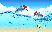 Dolphin celebrating Christmas