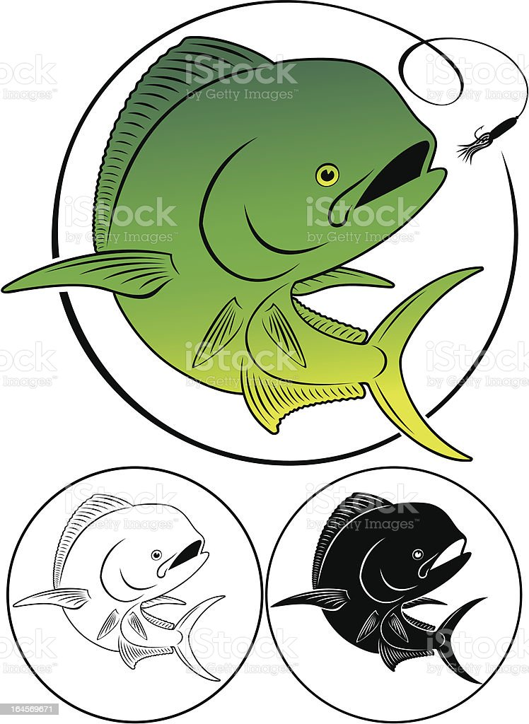Dolphin fish vector art illustration