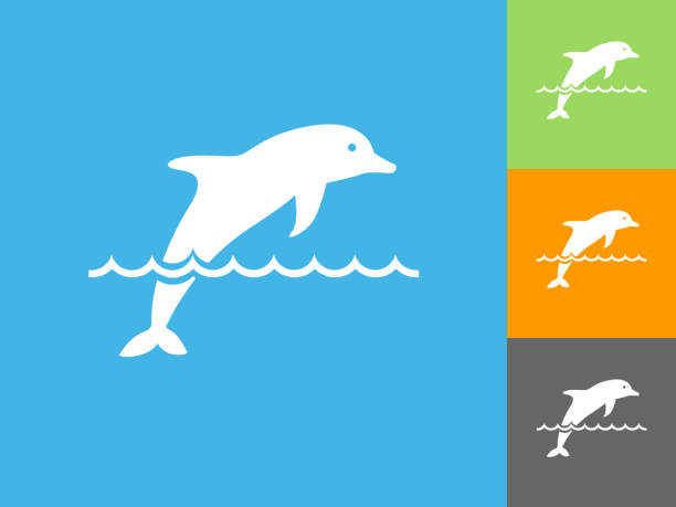 Dolphin Flat Icon on Blue Background vector art illustration