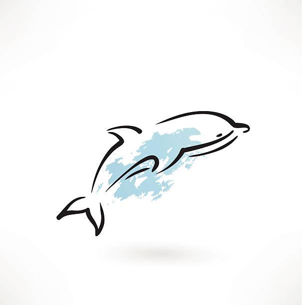 dolphin icon vector art illustration