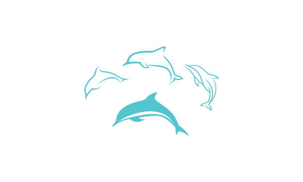 dolphin icon vector For your stock vector needs. My vector is very neat and easy to edit. to edit you can download .eps. dolphin stock illustrations