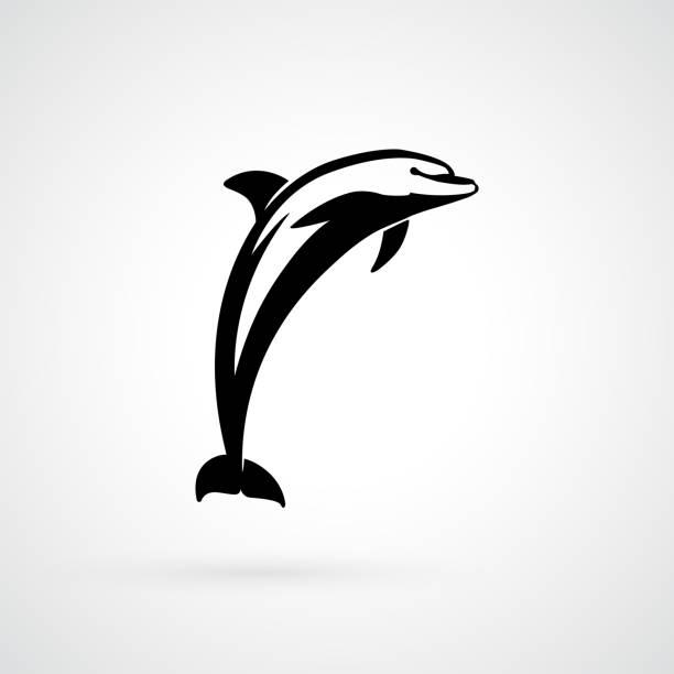 dolphin jump dolphin logo sign isolated vector illustration dolphin stock illustrations