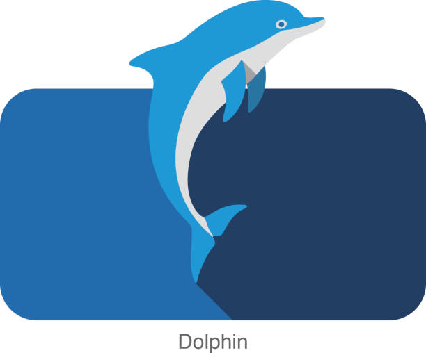 dolphin jumping ouside the sea flat icon design - dolphin stock illustrations