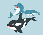 Dolphin, killer whale and cachalot cartoon characters