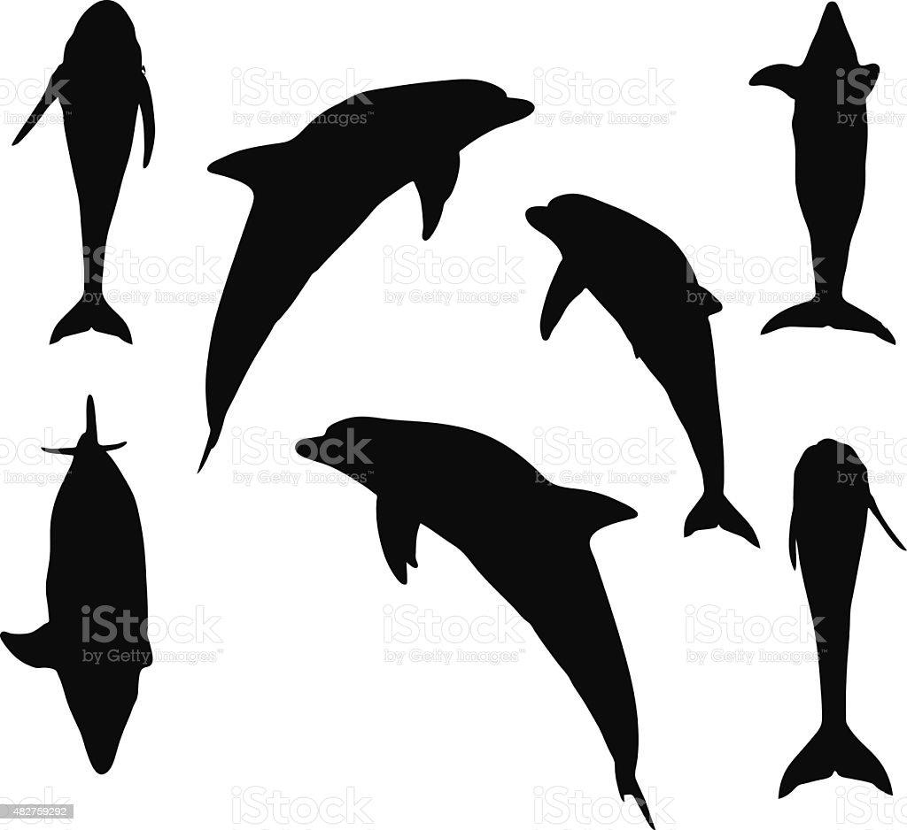 silhueta de golfinho arte vetorial de stock e mais imagens de 2015