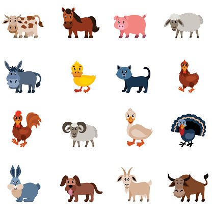 Domestic Animal Characters