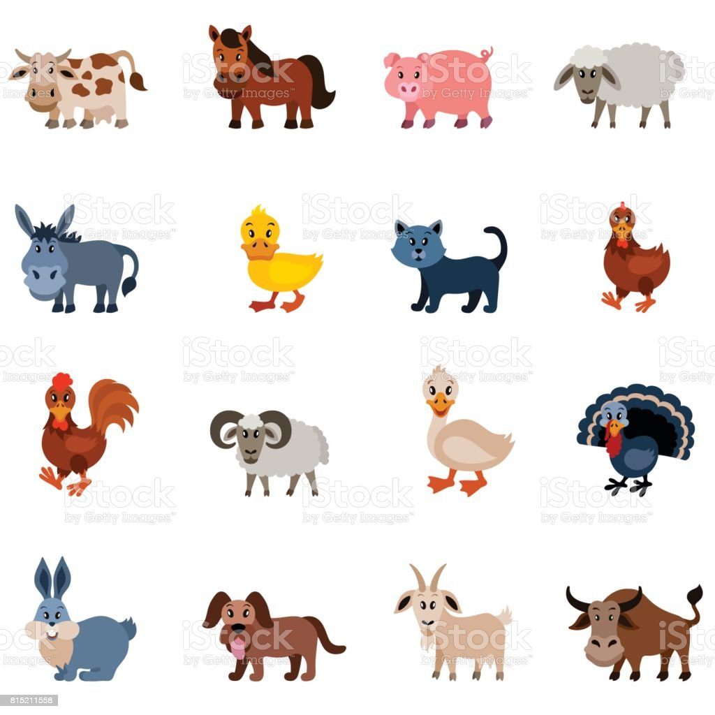 Domestic Animal Characters vector art illustration