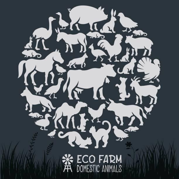 Domestic Animals Collage vector art illustration