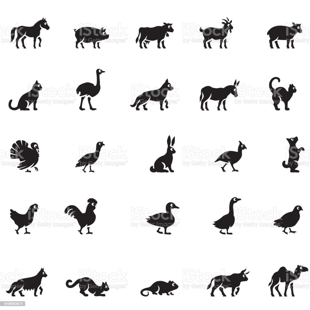 Domestic Animals Icon Set vector art illustration