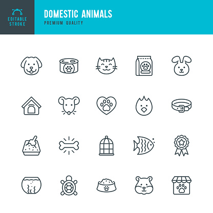 Domestic Animals - thin line vector icon set. Editable stroke. Pixel Perfect. Set contains such icons as Pets, Dog, Cat, Bird, Fish, Hamster, Mouse, Rabbit, Pet Food.