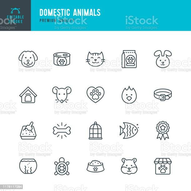 Domestic animals thin line vector icon set editable stroke pixel set vector id1178117094?b=1&k=6&m=1178117094&s=612x612&h=p7fsecn8me8wv5eaqtjsdj6qkwstsg3o3f4v4ut z e=