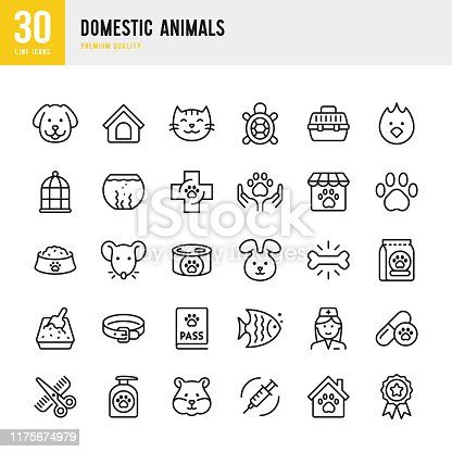 Domestic Animals - thin line vector icon set. Pixel Perfect. Set contains such icons as Dog, Cat, Pets, Bird, Fish, Hamster, Mouse, Rabbit, Pet Food, Veterinarian, Grooming, Pet Shop.