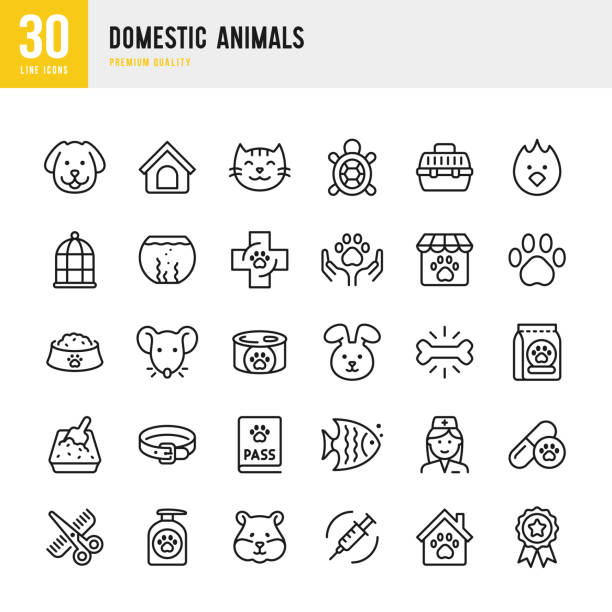 Domestic Animals - thin line vector icon set. Pixel Perfect. Set contains such icons as Pets, Dog, Cat, Bird, Fish, Hamster, Mouse, Rabbit, Pet Food, Grooming. Domestic Animals - thin line vector icon set. Pixel Perfect. Set contains such icons as Dog, Cat, Pets, Bird, Fish, Hamster, Mouse, Rabbit, Pet Food, Veterinarian, Grooming, Pet Shop. animal stock illustrations