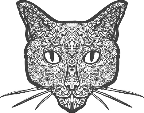 Domestic cat doodle drawing hand drawn on white background