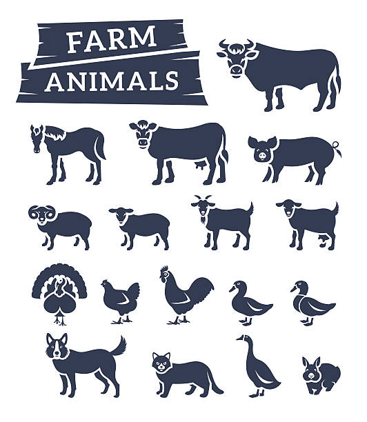 domestic farm animals flat silhouettes vector icons - farm animals stock illustrations, clip art, cartoons, & icons