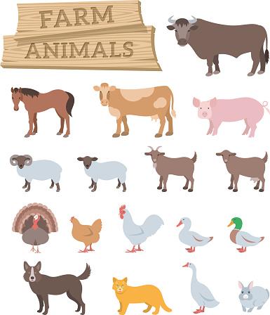 Domestic farm animals flat vector icons