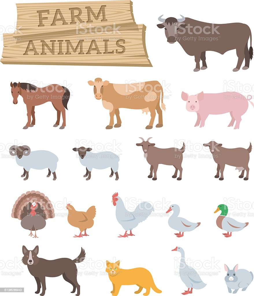 Domestic farm animals flat vector icons vector art illustration