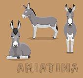 Donkey Amiatina Cartoon Vector Illustration