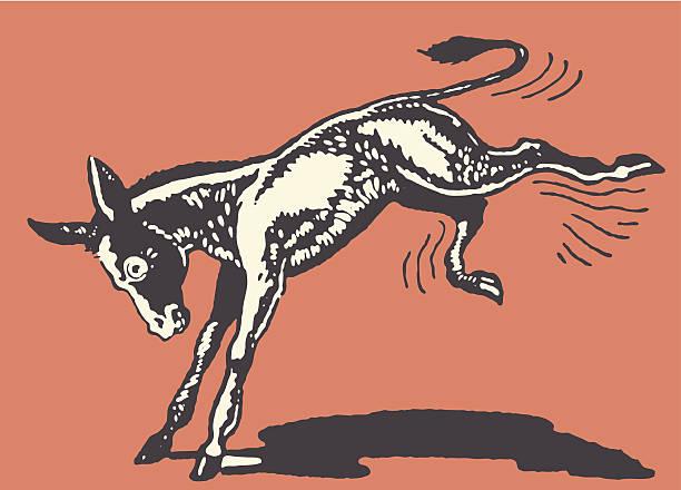 Donkey Kicking Donkey Kicking mule stock illustrations